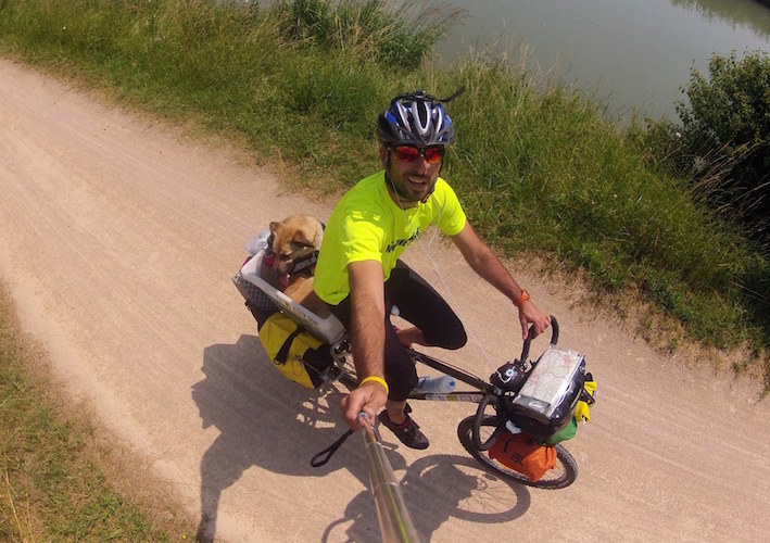 bikecanine 2012