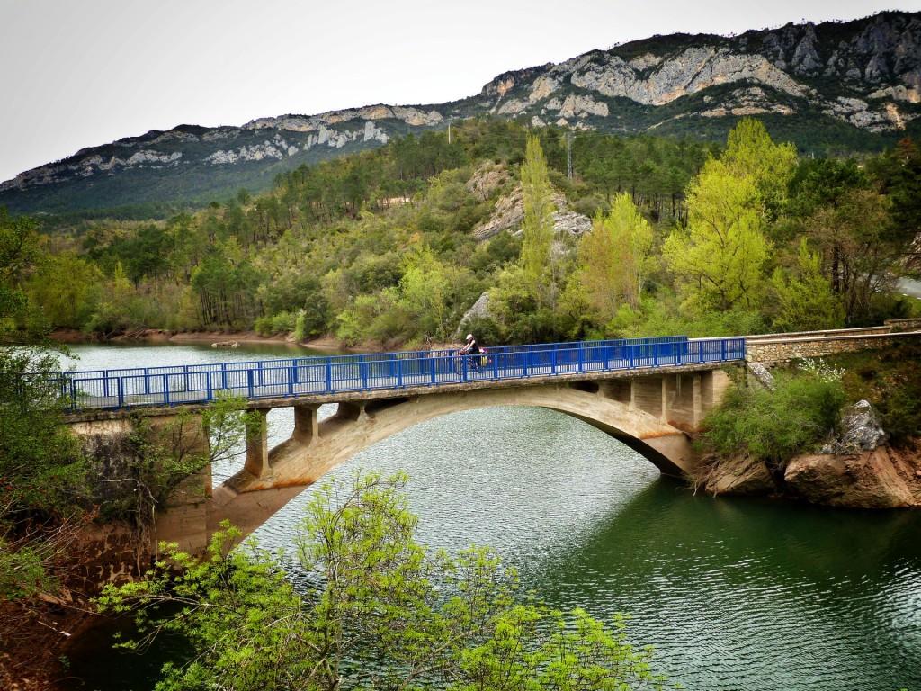 bikecanine bici puente