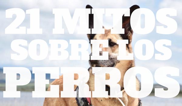 21 mitos sobre los perros