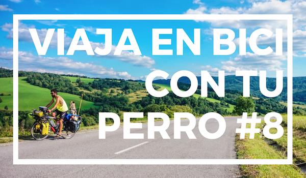 Viaja en bici con tu perro #8   FORMAS DE BAJAR DE LA BICI