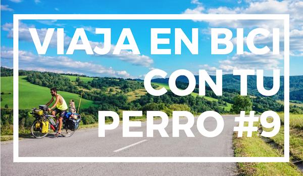 Viaja en bici con tu perro #9   CONDUCCIÓN DE LA BICI CON PERRO
