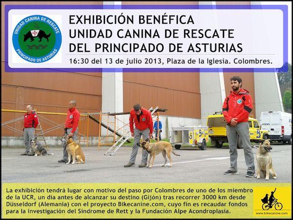 unidad canina de rescate